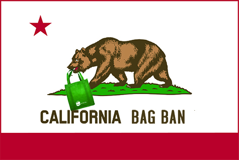 California Bear with Bag